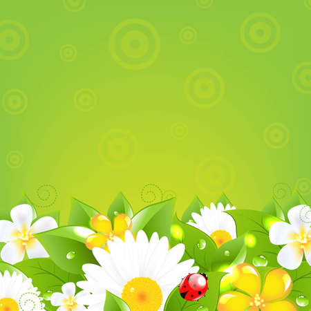 daisyflower: Borders With Grass And Colorful Flowers, With Gradient Mesh, Vector Illustration