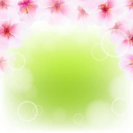 ébredés: Pink Cherry Flower határ Blu, gradiens Mesh illusztráció