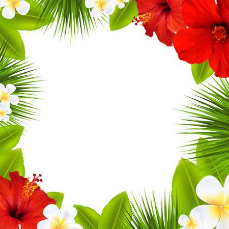 hawaiana: Frontera tropical, con malla de degradado, ilustración vectorial