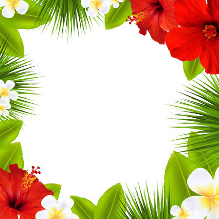 Tropical Border, With Gradient Mesh, Vector Illustration