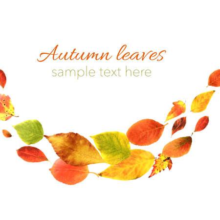 Autumn Leaves, Vector Illustration Illustration