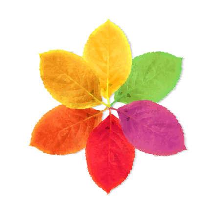Autumn Leaves Poster, Vector Illustration Vector