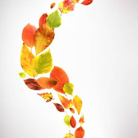Autumn Wallpaper With Gradient Mesh, Vector Illustration Vector