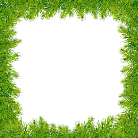 fir twig: Christmas Fir Tree Frame, Vector Illustration Illustration