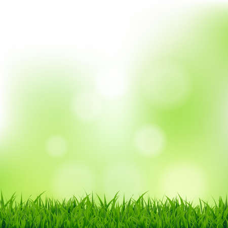 Grass And Bokeh With Gradient Mesh, Vector Illustration