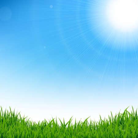 green grass and blue sky: Green Grass Border, Vector Illustration