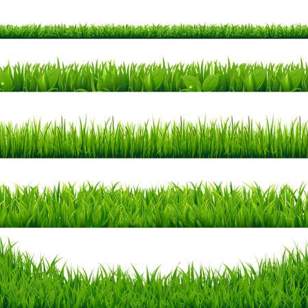 Green Grass Big Set, Vector Illustration Vettoriali