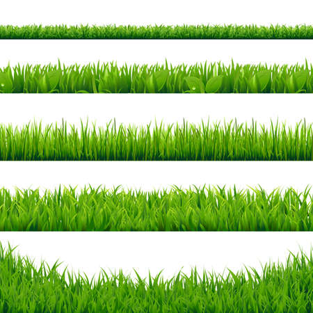 Green Grass Big Set, Vector Illustration Иллюстрация