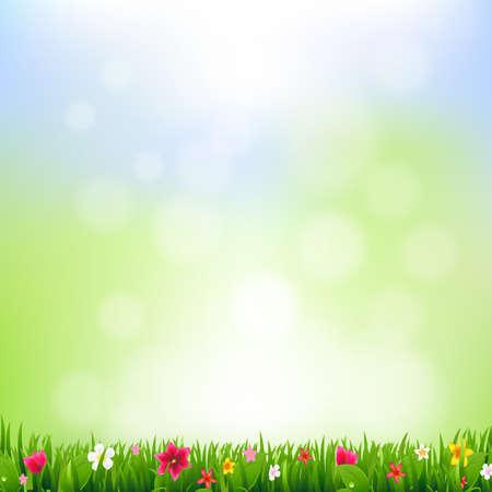 borde de flores: Hierba Y Flores y Bokeh con malla de degradado, Ilustración