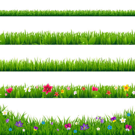 Grass Borders Set With Gradient Mesh, Illustration