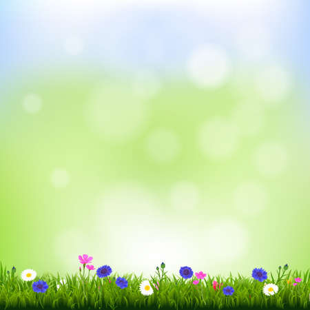 Spring Background With Gradient Mesh, Vector Illustration