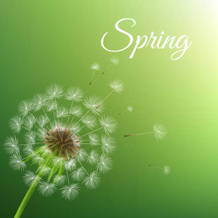 Dandelion And Spring Background With Gradient Mesh, Vector Illustration