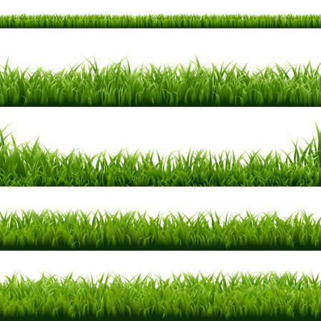 panoramic nature: Big Set Green Grass Borders With Gradient Mesh, Vector Illustration Illustration