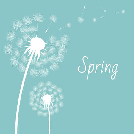young leaves: Dandelion Postcard With Gradient Mesh, Vector Illustration