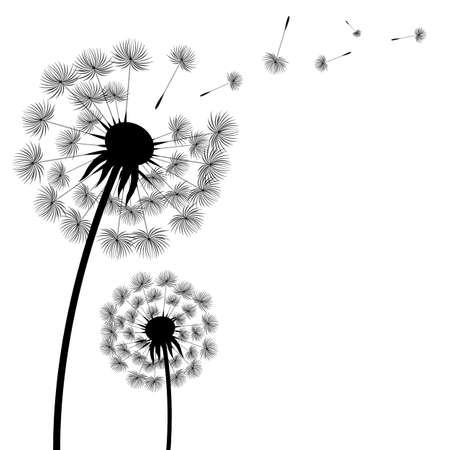 Silhouette Dandelion With Gradient Mesh, Vector Illustration