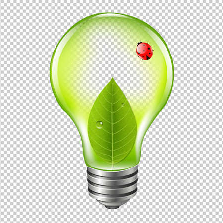 Eco Bulb With Ladybug With Gradient Mesh, Vector Illustration Illustration