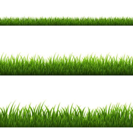 Grass Border, Illustration