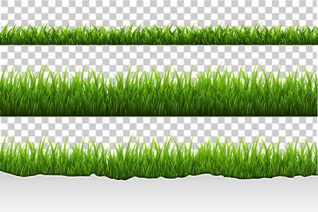 Gras Set, Vectorillustratie Stock Illustratie