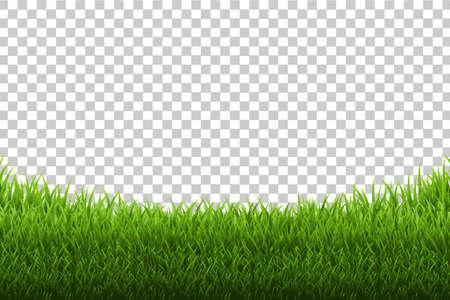 Fondo transparente de hierba panorama, ilustración vectorial Foto de archivo - 87210926