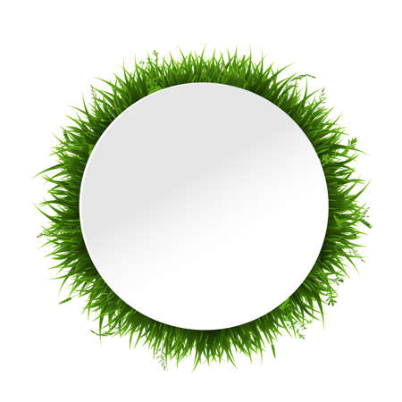 Banner With Grass Border Isolated, Vector Illustration