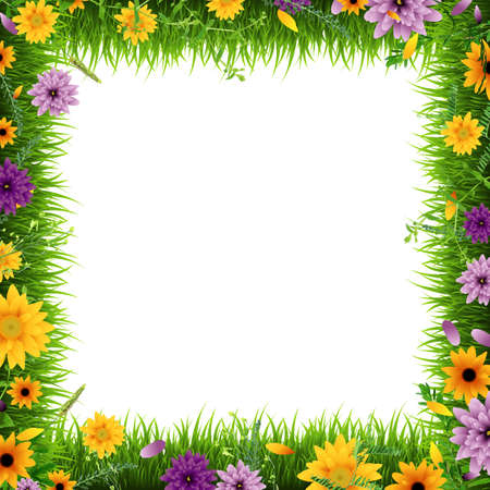 Grass Border With Flowers, Vector Illustration Illustration