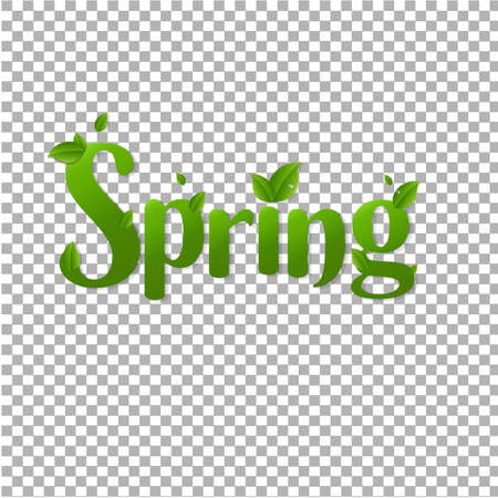 Spring Text With Green Branches Transparent Background With Gradient Mesh, Vector Illustration