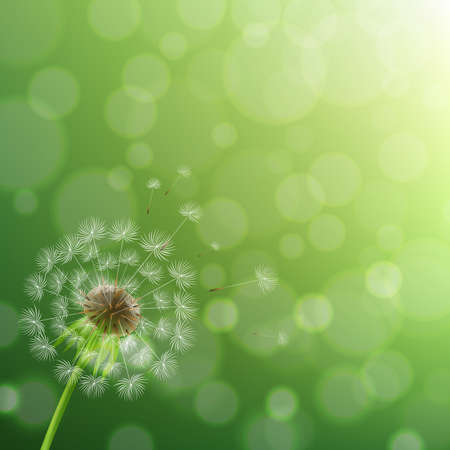 Dandelion And Summer Background With Gradient Mesh, Vector Illustration
