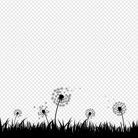 Dandelion Silhouette With Transparent Background With Gradient Mesh, Vector Illustration