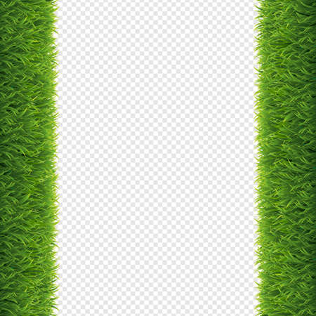 Grass Borders Transparent Background, Vector Illustration Illustration