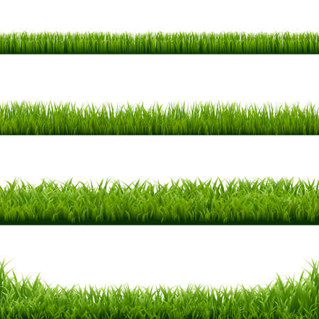 Big Set Green Grass Borders With Gradient Mesh, Vector Illustration Illustration