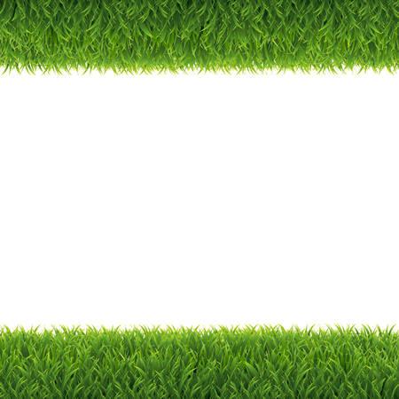 Green Grass Borders White Background, Vector Illustration