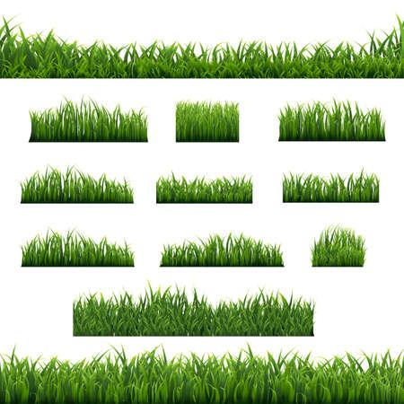 Big Set Green Grass Borders Background, Vector Illustration