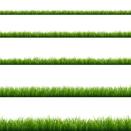 Green Grass Big Set, Vector Illustration