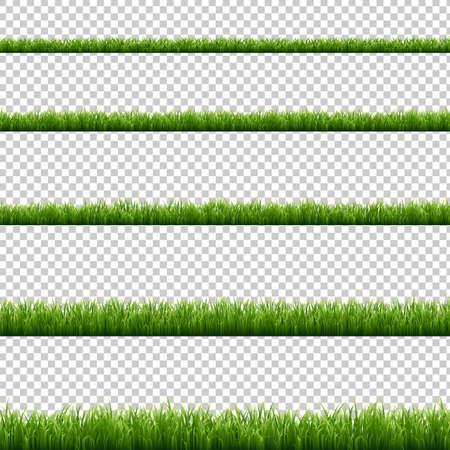 Green Grass Big Set transparent background, Vector Illustration