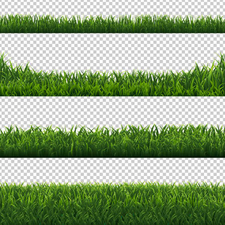 Bordi di erba verde impostati sfondo trasparente con maglia di gradiente, illustrazione vettoriale Vettoriali