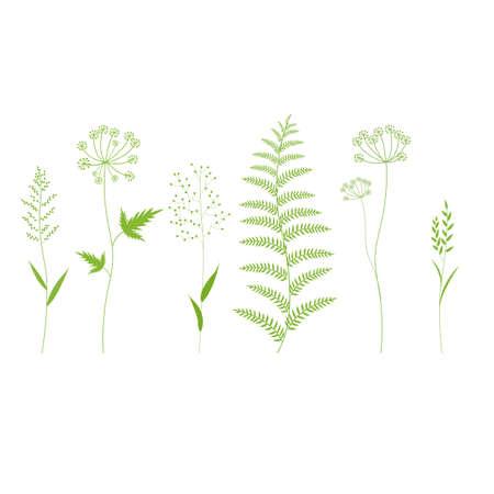 Grass Set Isolated, Vector Illustration
