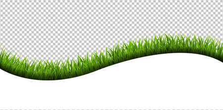 Grass frame Isolated Transparent Background With Gradient Mesh, Vector Illustration Çizim