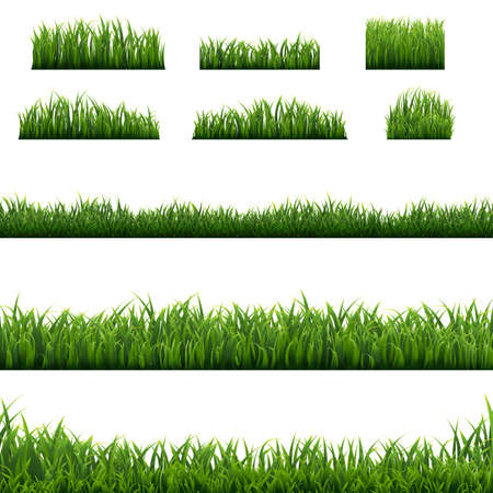 Big Set Green Grass Borders Background, Vector Illustration