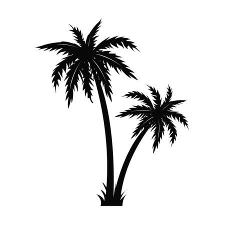 Palm Tree Black Silhouette Isolated White Background