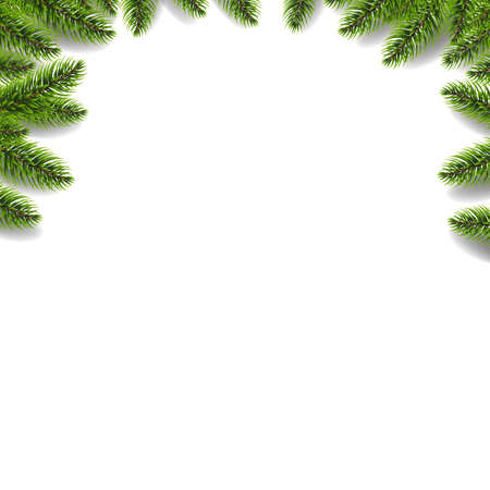 Green Fir Tree Border Isolated White Background