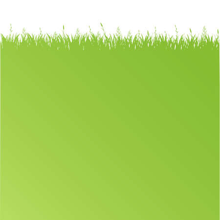 Green Poster With Green Grass, Vector Illustration