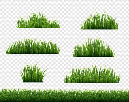 Green Grass Border Big Set Transparent Background With Gradient Mesh, Vector Illustration