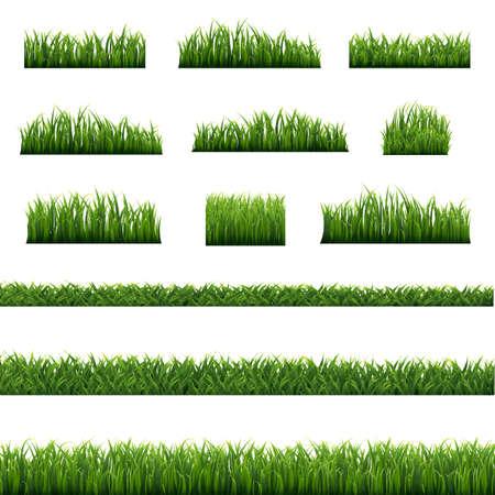 Green Grass Frame Isolated White background, Vector Illustration Ilustração