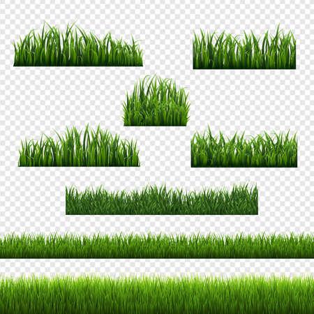 Green Grass Frames Transparent Background, Vector Illustration