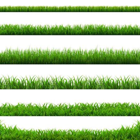 Big Set Green Grass Borders White Background, Vector Illustration Banco de Imagens