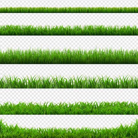 Big Set Green Grass Borders Transparent Background, Vector Illustration