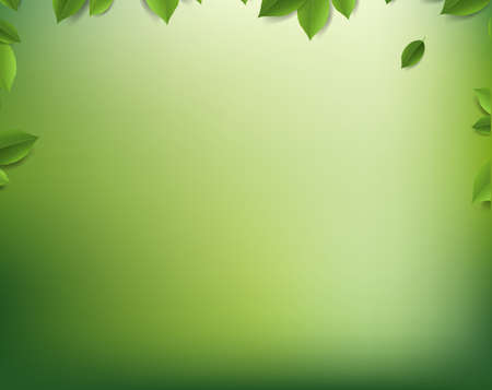 Nature Blur Background Nature Background With Leaves Flowers With Gradient Mesh, Vector Illustration Banco de Imagens