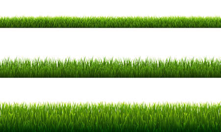 Set Green Grass Borders White Background, Vector Illustration