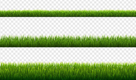 Set Green Grass Borders Transparent Background, Vector Illustration