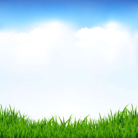 Blue Sky And Greeen Grass With Gradient Mesh, Vector Illustration Vettoriali